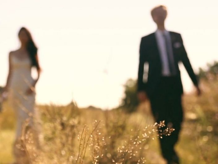 Wedding - Highlights - Alice - Christian